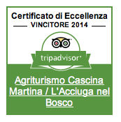 certificato eccellenza 2014 acciuga nel bosco
